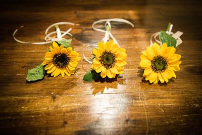 Button hole sunflowers