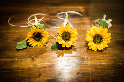 Button hole sunflowers